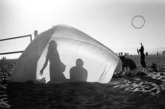 . by Stevie Dacanay - venice beach, ca