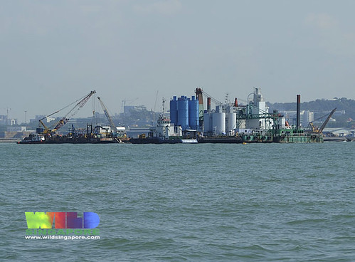 Reclamation works at Pasir Panjang Container Terminal