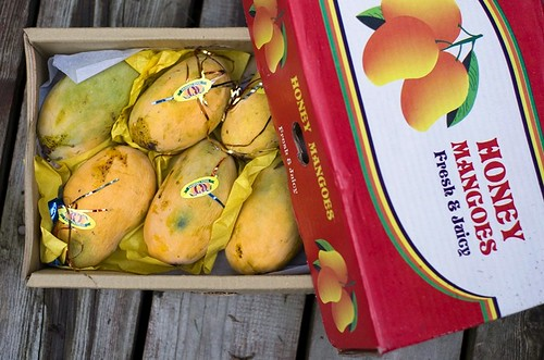 Honey Mangoes from Pakistan