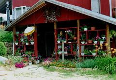 Mahayana Dharma Center/Medicine Buddha Healing Center (2006)