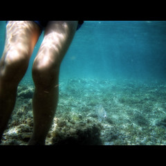 In the blue (Giorgio Verdiani) Tags: sardegna sea water swimming mediterranean mediterraneo mare sardinia underwater legs snorkeling pesci knees fishes acqua vivicam vivitar 5050 gambe ginocchia sinis ichnusa ettore subacquea subacqueo funtanameiga nuotando