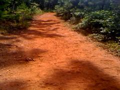 Blue Trail 3