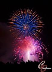 Fireworks Finale 2009
