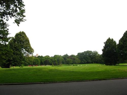 nethermead, prospect park - 5