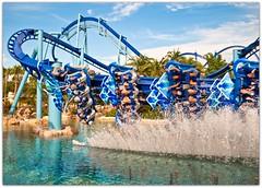 MAAAANTAAAA! (kevkev44) Tags: water orlando bm rollercoaster seaworld coaster manta fastshutter seaworldorlando nikond60 flyingcoaster mantarollercoaster