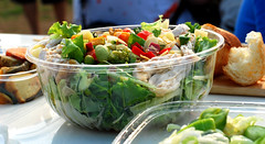 salad / Gundam picnic ([puamelia]) Tags: 50mm salad odaiba d60 gundampicnic