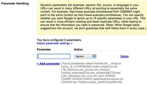 Google Parameter Handling