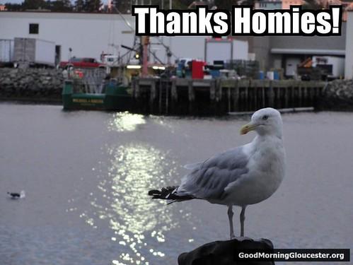 Thanks homie