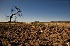 Damaraland | Namibia (Jose Antonio Pascoalinho) Tags: africa mountains nature landscape nikon stones environment namibia globalwarming ecosystem redland palmwag damaraland letssaveourplanet zedith sigma1020mm1456dchsm solitarydrytree