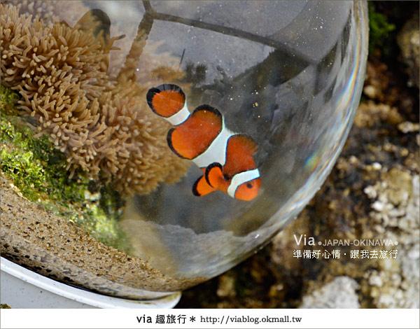 【沖繩景點】書上沒教你玩的琉球!via玩琉球《第二天》24