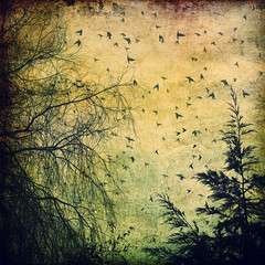 Birds flying over my misty garden (louisahennessysuou) Tags: texture birds garden weepingwillow visualart nikon1755mmf28 impressedbeauty impressedbyyourbeauty 247365 theblackbirds thebestofday gnneniyisi january2009 t189project365 artistictreasurechest