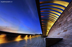 Our New Landmark - Singapore Henderson Waves Bridge (Ragstatic) Tags: bridge light urban color architecture composition relax landscape design nikon singapore exposure dof angle designer rags famous perspective structure architect depth dri d700 bluhour theperfectphotographer hendersonwaves ragsphotography