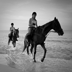 Morning Ride along the Mediterranean Seaside (Moonlight Witch) Tags: sea bw horse woman white black me water seaside mediterranean ride tunisia joy moonlight vacations утро отдых лошадь море hammameth катание средиземное побережье тунис верхом