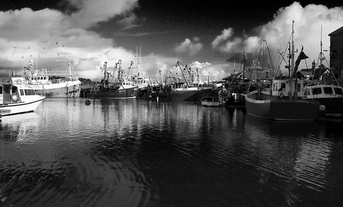 The Fleet in Harbour - Monochrome