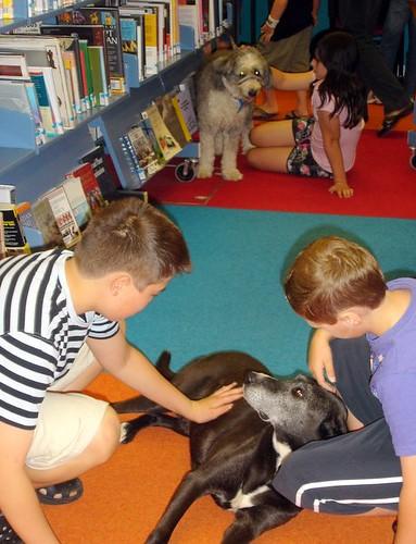 bibliothekshunde