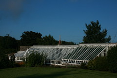 main greenhouse at knockdolian (andym68) Tags: greenhouse ballantrae knockdolian