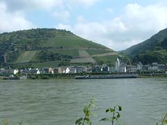 Rhine5 (Wadman60) Tags: rhine rhineriver rhineferry