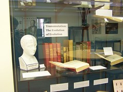 Evolutionary books, Whipple Museum, University of Cambridge
