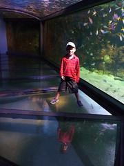 Acquarium Floor (novemberjuliet) Tags: australia sydneyaquarium normajeanbarrett
