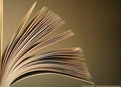 Book2 (ANOODONNA) Tags: idea book alrasheed alanood   anoodonna