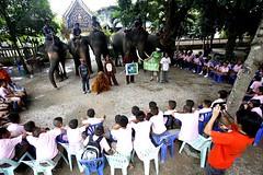 """Day 4 of Chang(e) Caravan วันที่ 4 ของ """"เดินกับช้างร่วมสร้างการเปลี่ยนแปลง"""