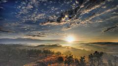 alba a settembre (francesco sgroi) Tags: italy panorama cloud landscape nikon nuvole wine country campagna tuscany grapes chianti toscana terra grape hdr vigne certaldo vino vendemmia agricoltura vigneto sigma1020 v