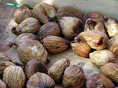 M'interessa proprio un bel fico secco......... I don't give a damn (Dry fig!) (Sante.boschianpest) Tags: tramonti bison figs fico fichi fossola ficosecco fichisecci