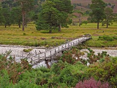 Carnachuin Bridge (RoystonVasey) Tags: park bridge canon scotland is powershot glen ixus sd national 1200 95 compact cairngorm cairngorms cnp feshie carnachuin