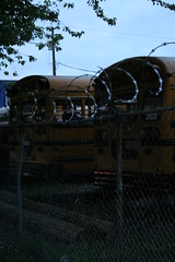 School's out. (Angry Bear Film Productions Inc.) Tags: nightphotography classic fence wonderful dark barbedwire laughter lovely schoolbus groovy imprisoned lostinnocence appropriate schoolsoutforsummer schoolisout