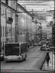 "Mercedes O530 ""Citaro"" - 254 (Rui Nuns) Tags: bus mercedes benz coimbra omnibus autocarro smtuc citaro evobus o530 fujifilms6500 ruinunes"