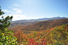 Colorful mountainside in Asheville, North Carolina