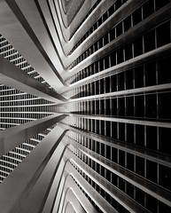 Calatrava Lines (Rik Hermans) Tags: abstract lines station architecture belgium belgi trainstation calatrava hurry abstracts brilliant contrasts rik tgv santiagocalatrava trein hermans lige grandeur lijnenspel exploreme tgvstation ligeguillemins absurdisme frontpageme rikhermans hermansrik