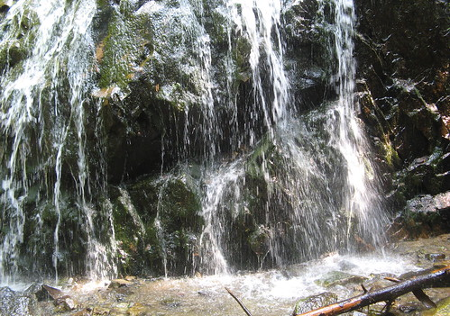 Another waterfall on Glen Burney Trail