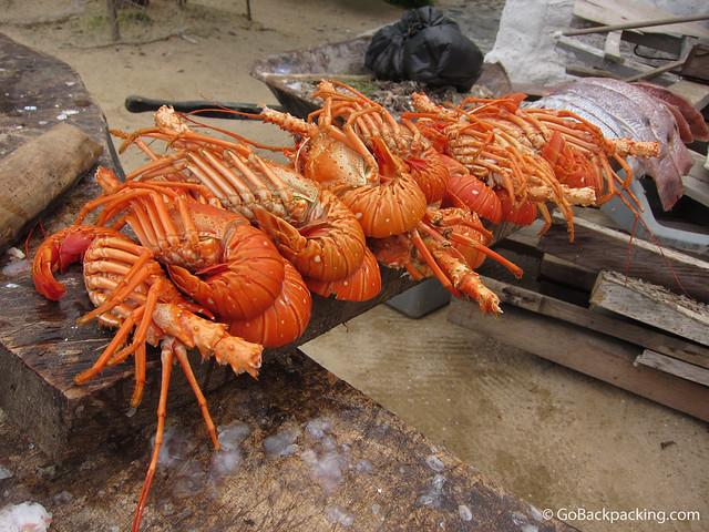 Fresh warm water lobsters