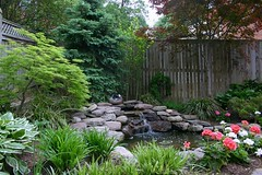 Water Features and Ponds | Masonry Division | Johnsons Landscaping 22 (Johnsons Landscaping Service, Inc) Tags: landscaping service johnson landscape design montgomery county bethesda chevy chase takoma park kensington silver spring potomac rockville olney northwest dc nw maryland md washington gardening stone work masonry walkways patios plantings paver driveways retaining walls segmental plan stairs lighting exterior scenic outdoors water features arbors trellises decks fences carpentry ponds johnsonslandscapingservice incresidentialandcommerciallandscapedesignservicesinwashington chevychase takomapark silverspring montgomerycountyotherservicesgardendesign landscapelighting exteriorlighting drainage stonewalls retainingwalls yarddesigns stepsandwalkways timberwallspatiosstepsandwalkwayspondsgardendesignstonewallsexteriorlightingpruningandtrimmingpaversflagstonewalkwayflagstonepatiodrainageretainingwallsyarddesignslandscapingservicejohnsonlandscapinglandscapedesign