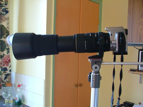 Canon EOS350D with Sigma 170-500mm