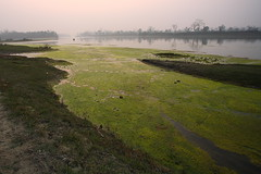 100_6499.JPG (Bryan Hsieh) Tags: travel nepal sunset river landscape temple boat culture  kathmandu  chitwan          pushupatinath