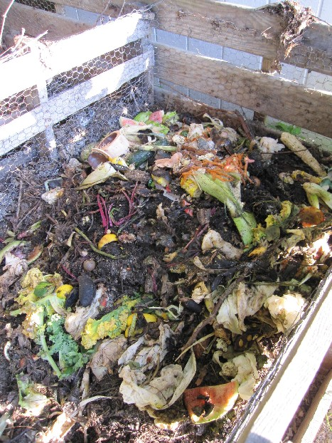 compost_pile