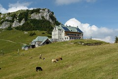 Rotwandhaus 3 (WeatherMaker) Tags: mountain mountains alps germany bayern bavaria hiking meadow lodge pasture sensational alpen dav alpenverein blueribbonwinner rotwand rotwandhaus