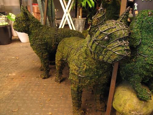 Boston Terrier Moss & Wire Sculpture