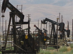 Oil derricks dotting the landscape of western Kern County. Kern is home to 70% of all California oil production. (Photo: John Myers, KQED)