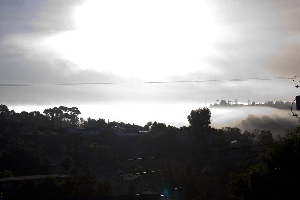 foggy and sunny