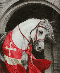 Knight Stallion (Angel-86) Tags: red horse white drawing gray medieval knight coloredpencils stallion andalusian