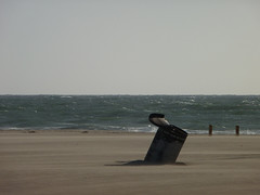 Windy Day Trash Can (jdmofo86) Tags: sand wind ripples hermosabeach