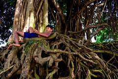 The thought process [..Savar, Bangladesh..] (Catch the dream) Tags: old boy tree thought bongo thinker roots thinking leisure relaxation bengal bangladesh banyan gnarled lay rooted bengali banyantree bangladeshi sinuous sadullapur ttlpod195 gettyimagesbangladeshq2