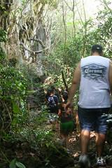 Cliffline Hikes