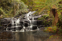 Better Get to Livin' (dolphine87) Tags: green nature wet water landscape waterfall nationalpark moss log rainforest rocks stream rocky australia victoria falls motionblur ferns greatoceanroad otways ferntree flowingwater wetrocks geatotwaynationalpark