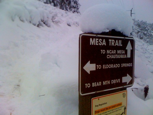 Mesa Trail Junction