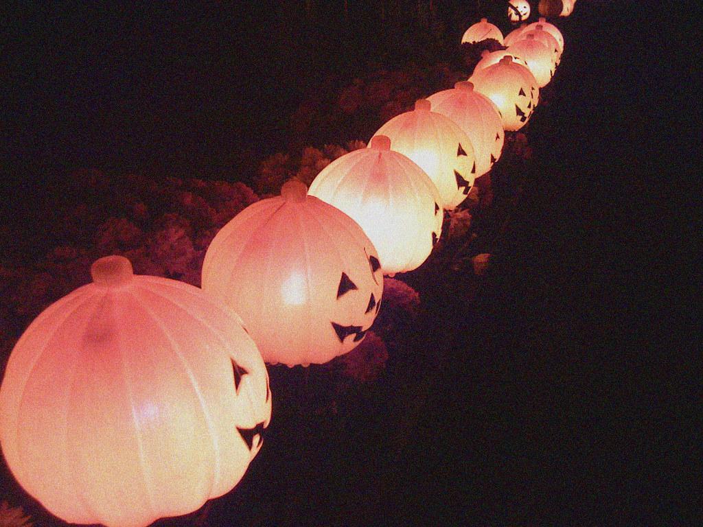 jack o lanterns 2