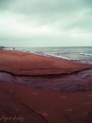 Wilmette II Lomo (acooke4) Tags: beach waves footprints run